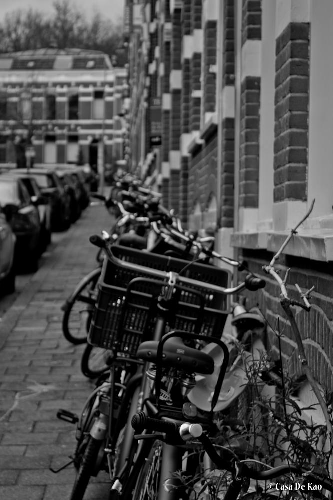 Bikers lane