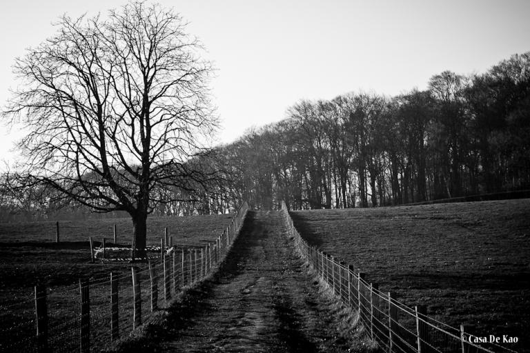 Klarenbeek #3