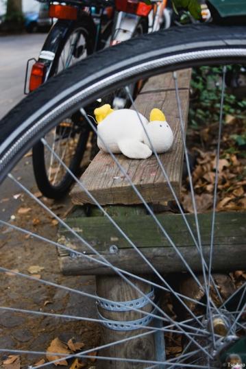 kao-berlin-duck-2393