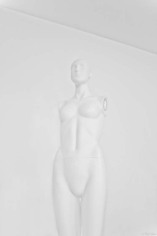 kao-bodyparts-3938