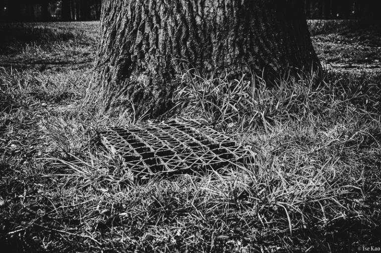 kao-backyard-wipeyourfeet-9354